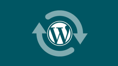 Photo of How to Upgrade WordPress themes & plugins manually?