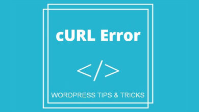 Photo of How to Fix cURL error 28 in WordPress?