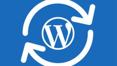 Photo of How to Update WordPress Manually?